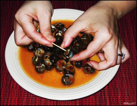 Vavalaggi al sugo ovvero le lumache di mare della mia for Cucinare le lumache